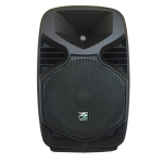 "CASSA ACUSTICA AMPLIFICATA 12"" BLUETOOTH E MP3 INTEGRATO 400W PICCO"